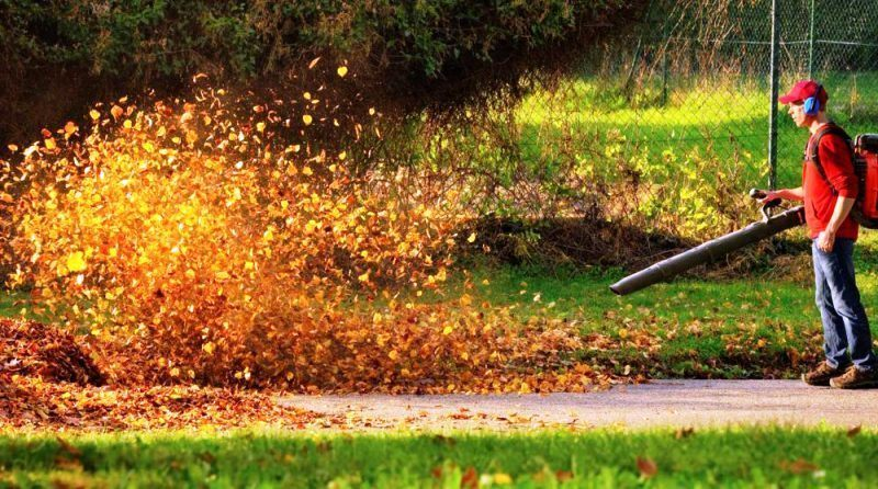 5 Leaf Blower Techniques Every Newbie Should Know
